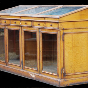 A handsome Victorian glazed oak Museum Case-0