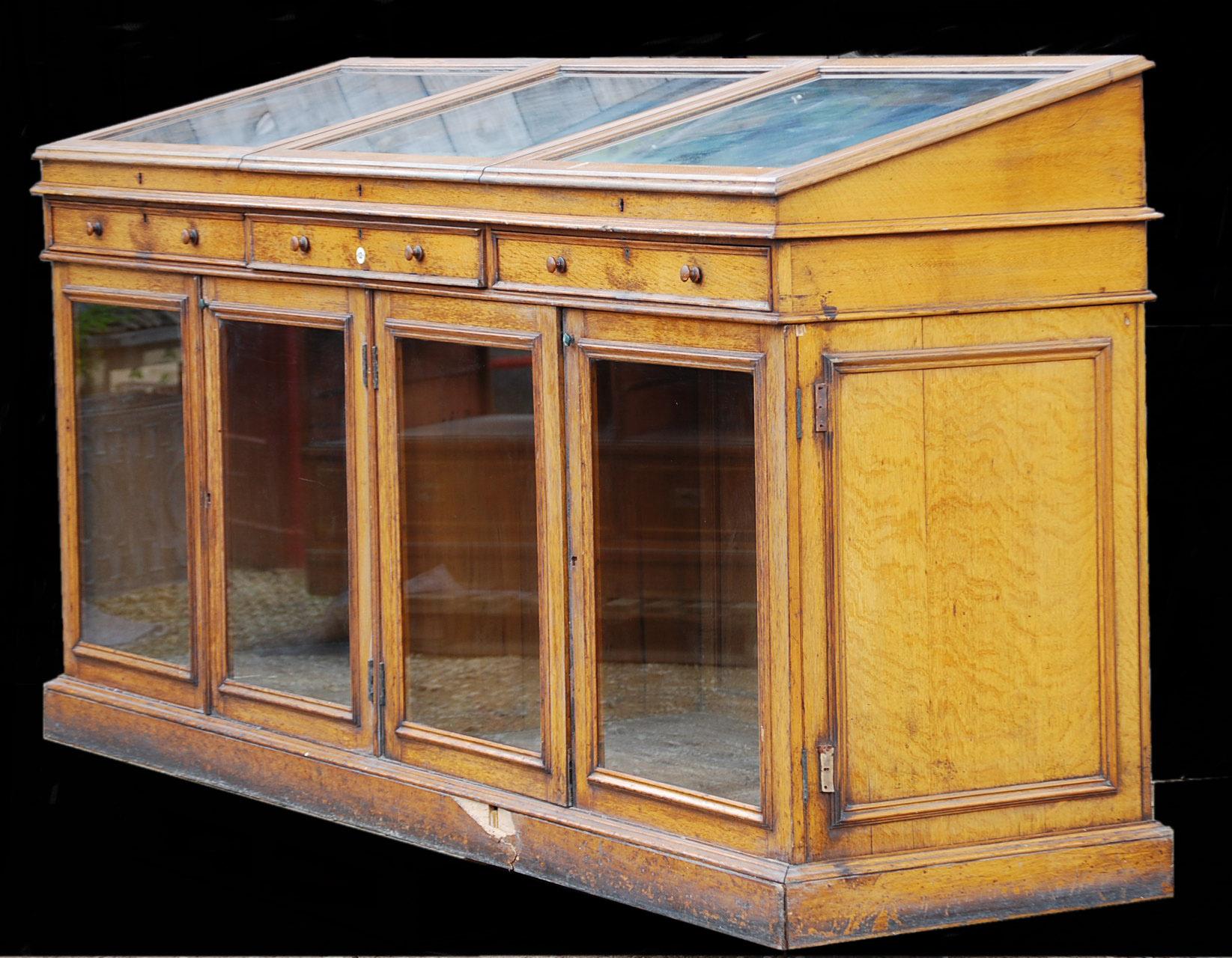 A handsome Victorian glazed oak Museum Case-0