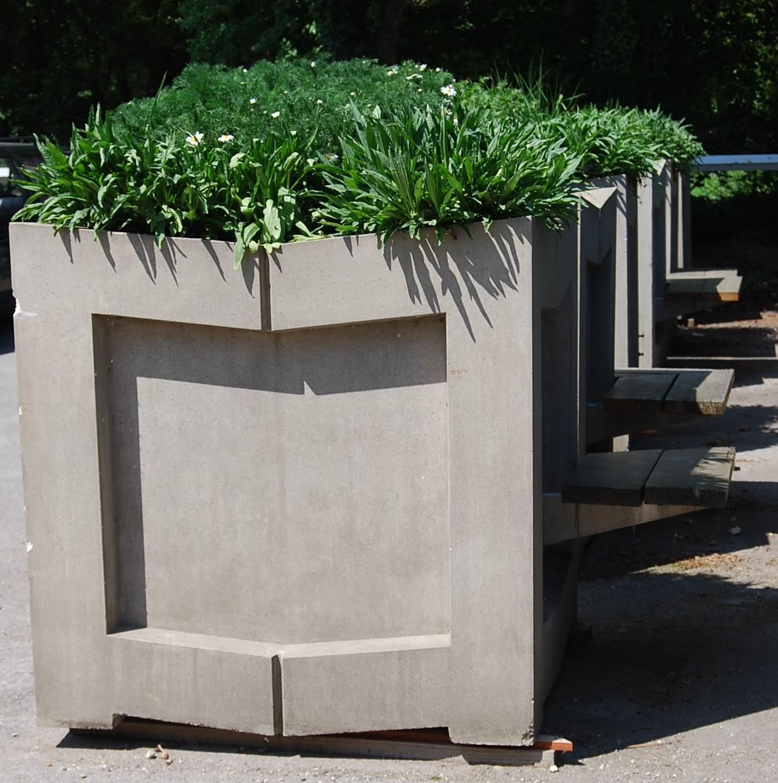 A series of massive, concrete, Brutalist treeplanters-70188