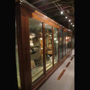 Museum Cabinet