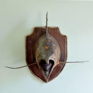 A stuffed and preserved Black Marlin