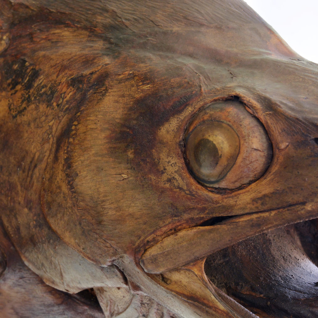 A stuffed and preserved Black Marlin, -91839