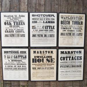 Jonas Paxton Poster