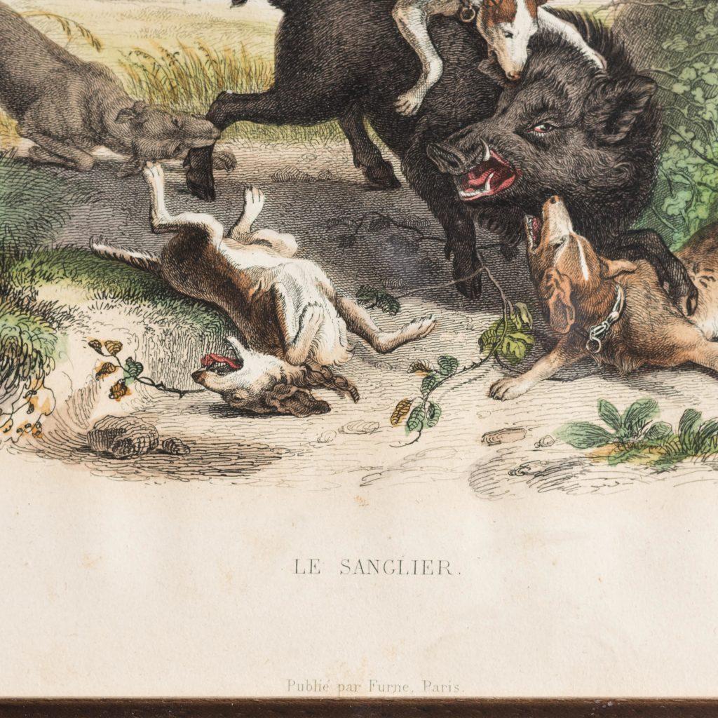 Boar Hunt-103088