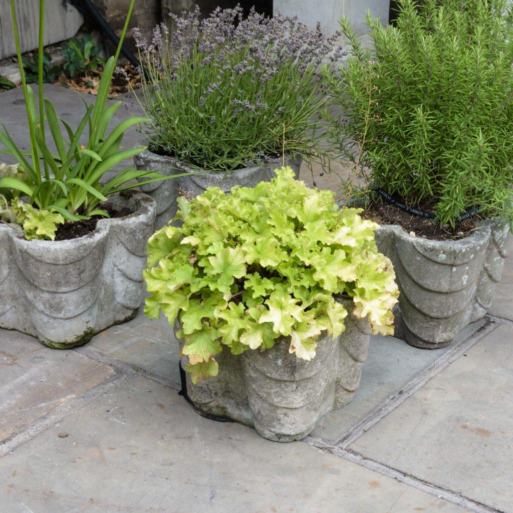 Four quatrefoil composition stone planters,-107287