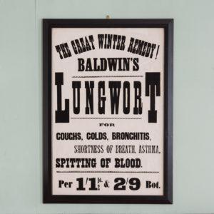 Original chemist shop advertising poster, Baldwin's Lungwort-0