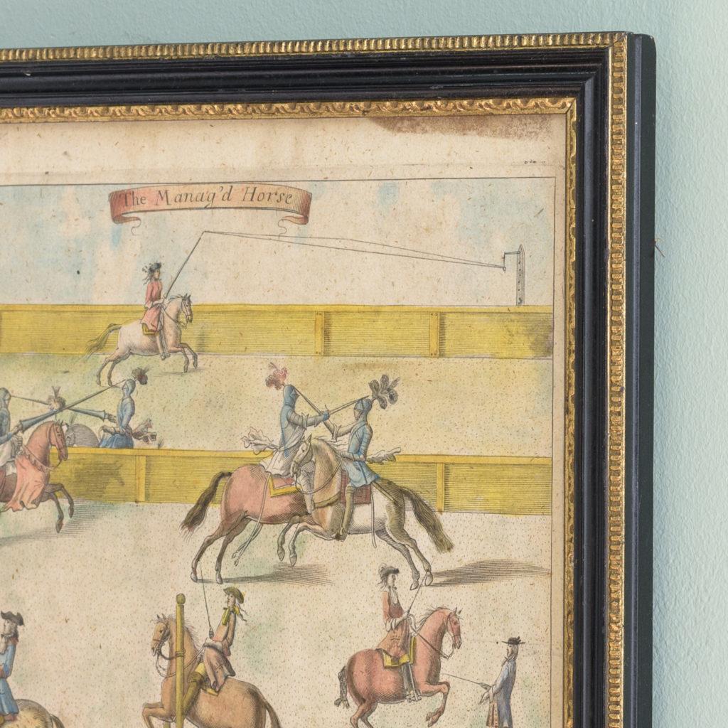 The Manag'd Horse,-112751