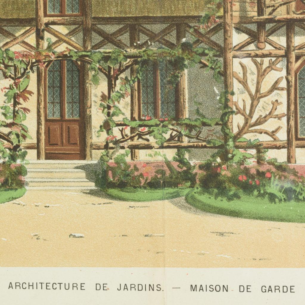 Original chromolithograph botanical prints,-113431