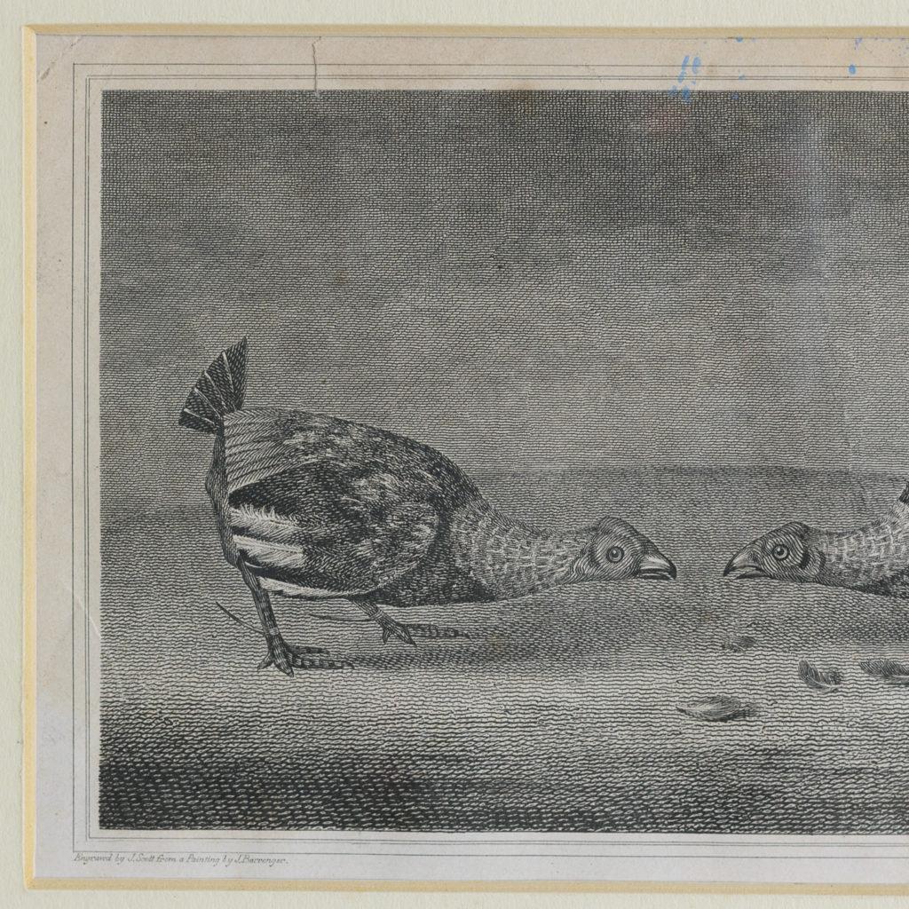 Original copper-engraved print,-114292