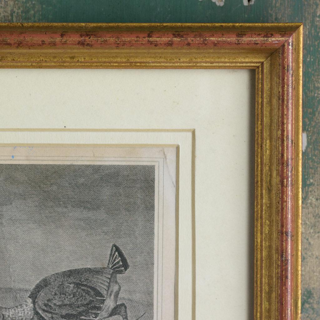Original copper-engraved print,-114290