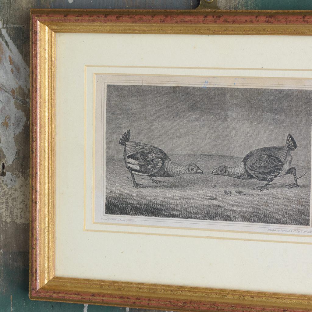 Original copper-engraved print,-114289