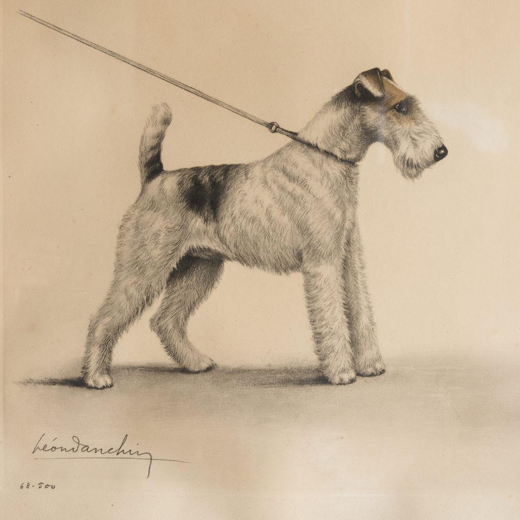 Original aquatint of Two Fox Terriers-116351