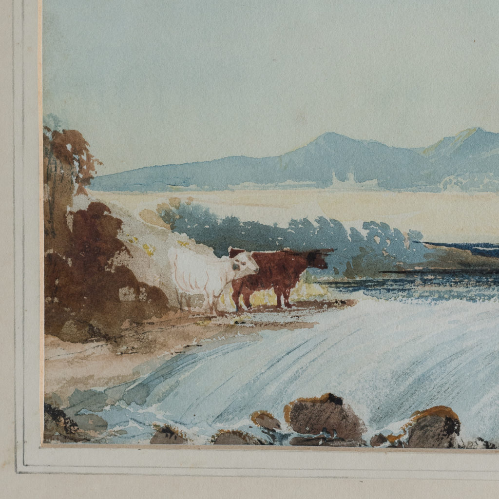 Cattle by a Stream,-116241
