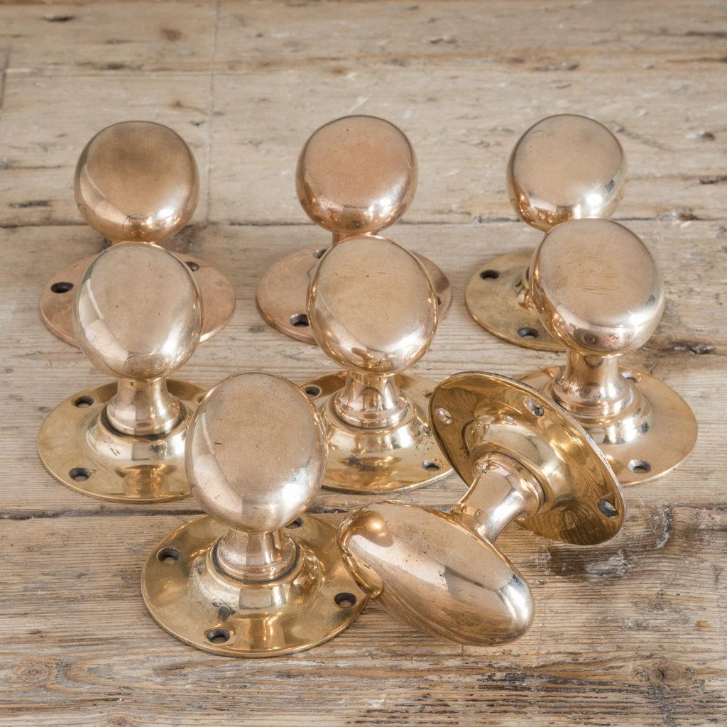 Reclaimed oval brass door knobs