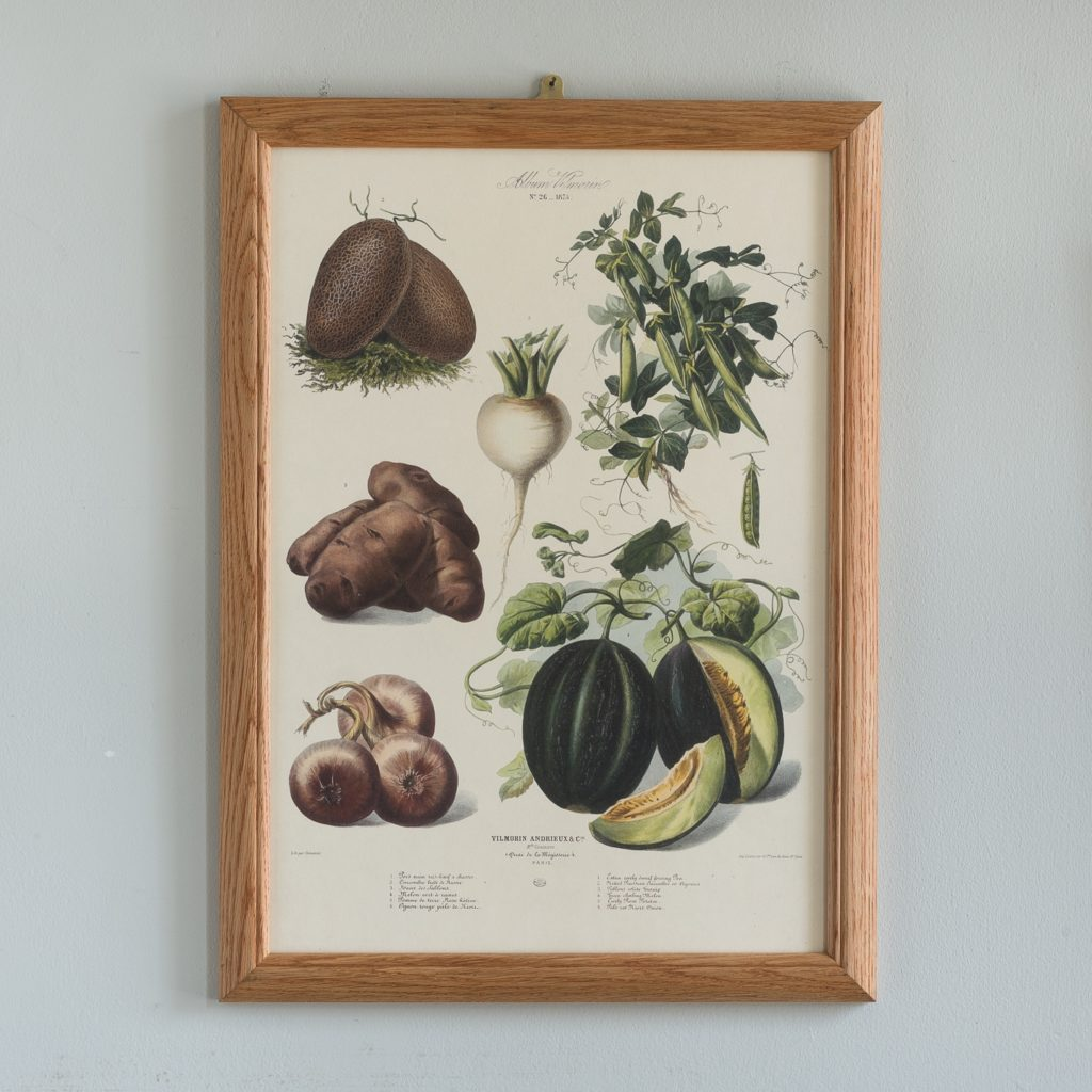 No. 26 1875