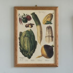 No. 10 1859