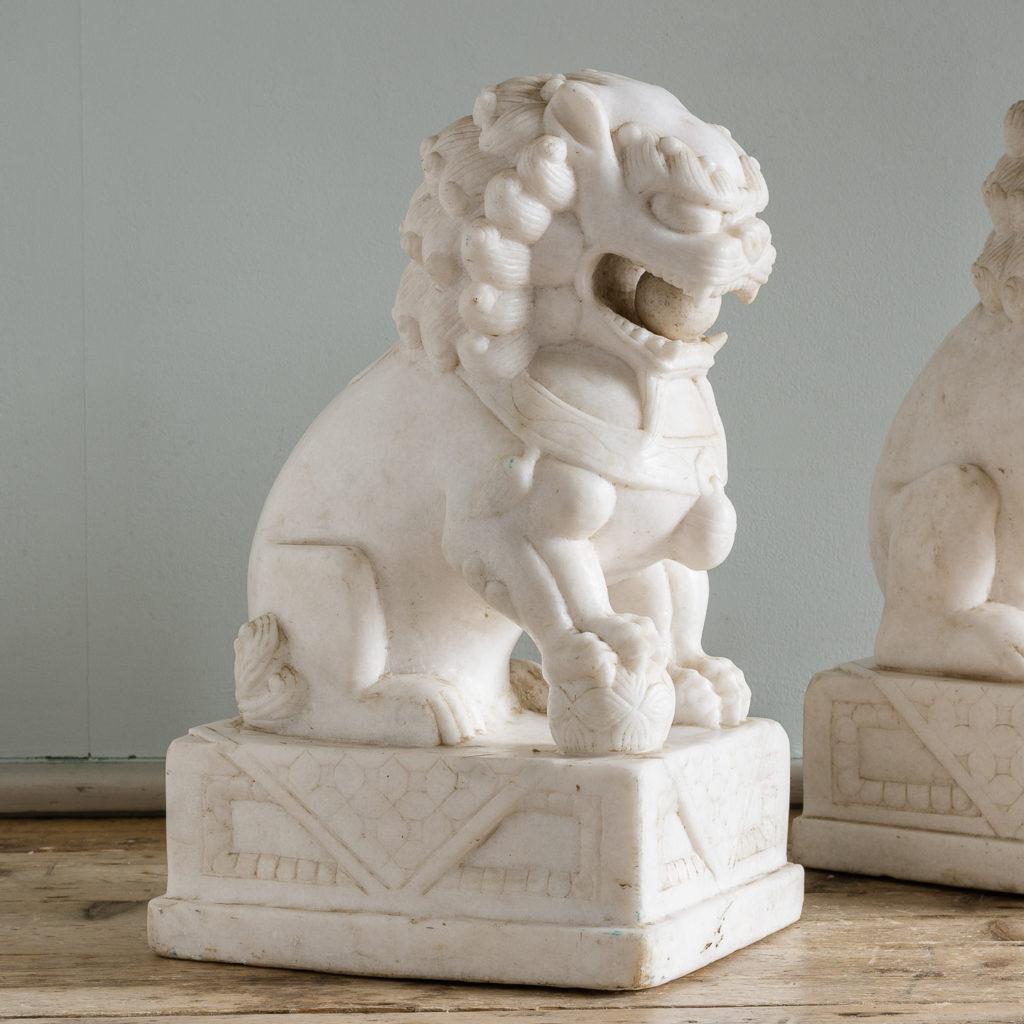 each modelled sitting on their hind legs
