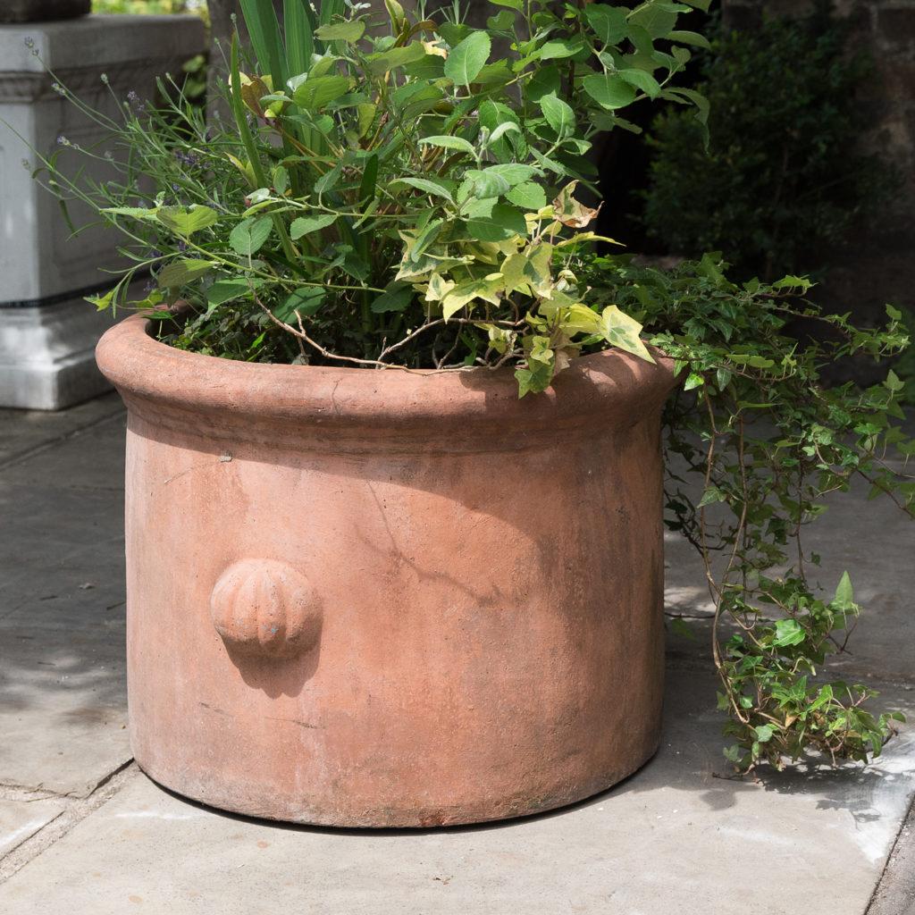 Round terracotta planters,