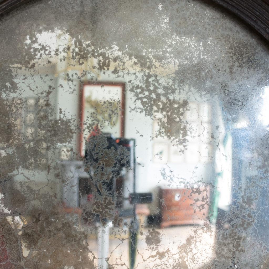Regency gilded convex mirror,-132519