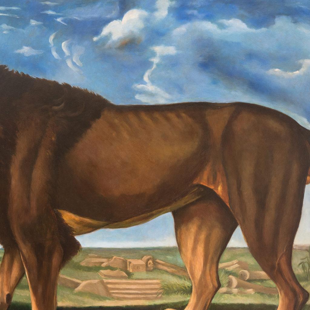 Majestic lion in a landscape-136216