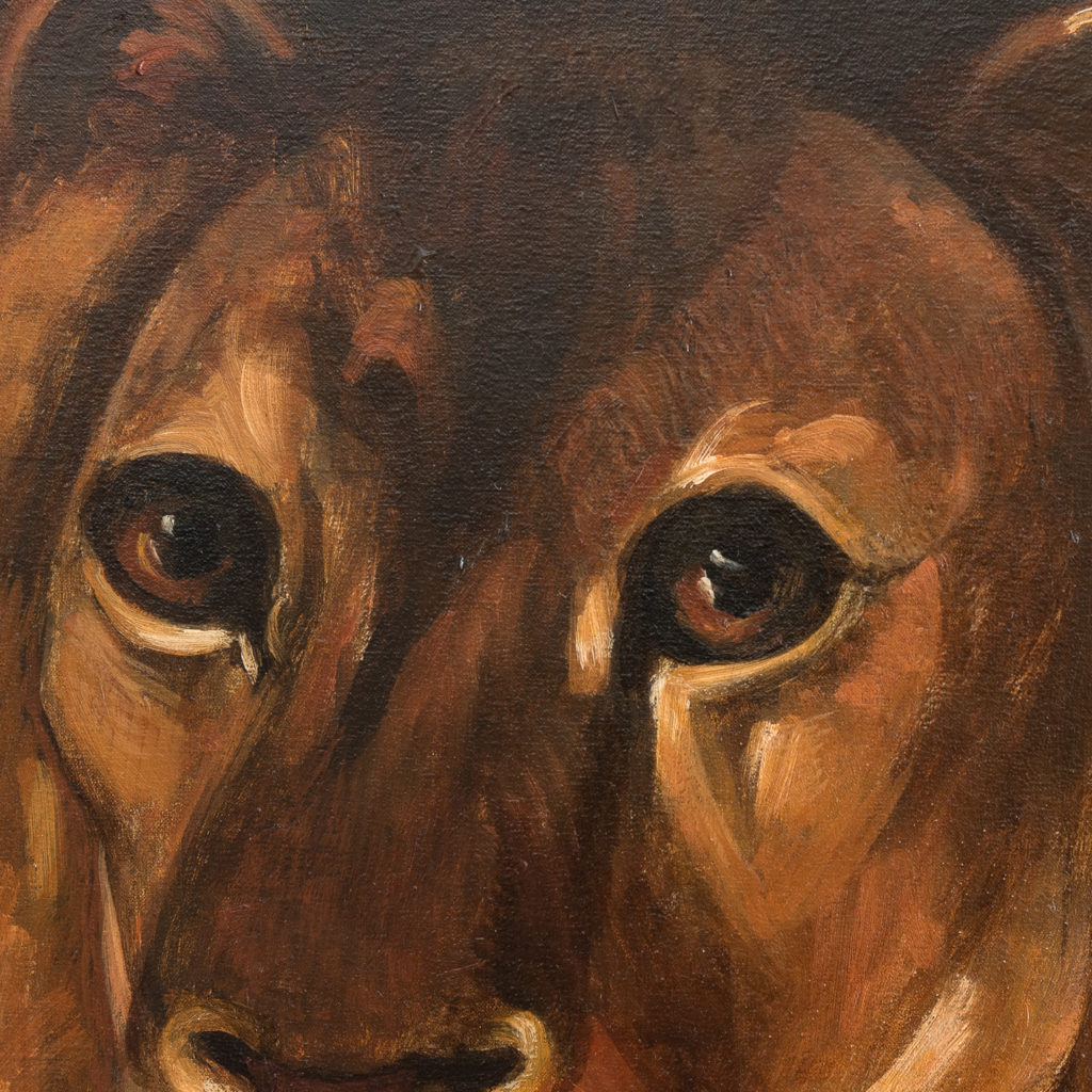 Majestic lion in a landscape-136220
