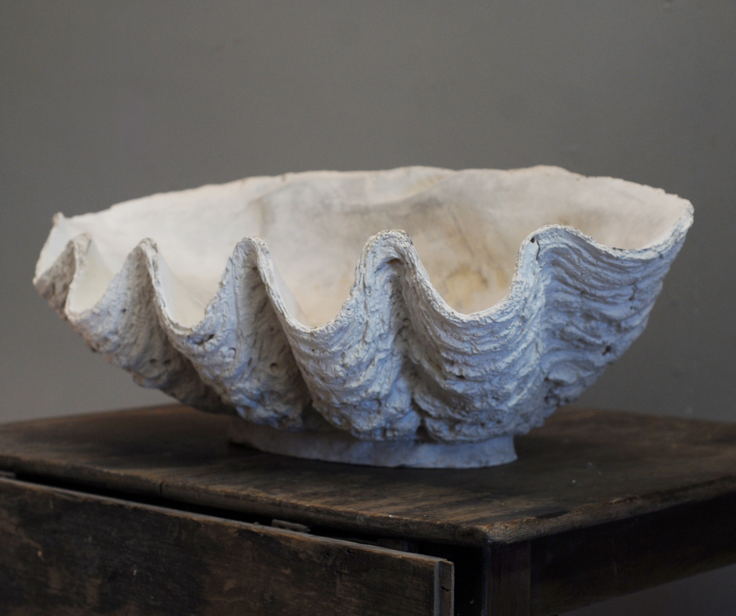 An English plaster cast of a clam shell-136748