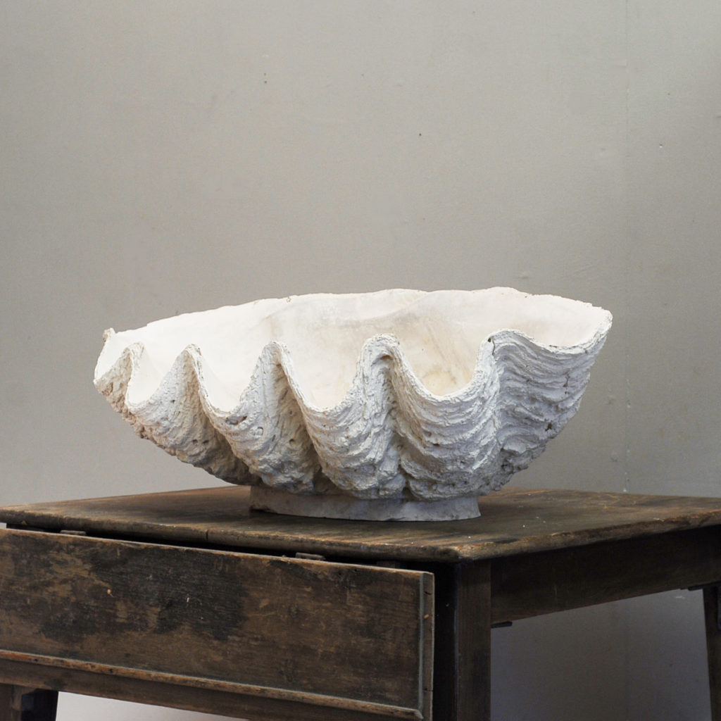 An English plaster cast of a clam shell-0