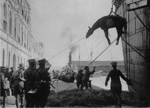 Unloading a Horse, Greece 1915