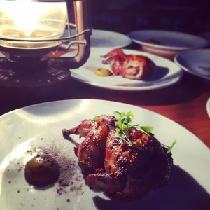 Quail by lamp-light